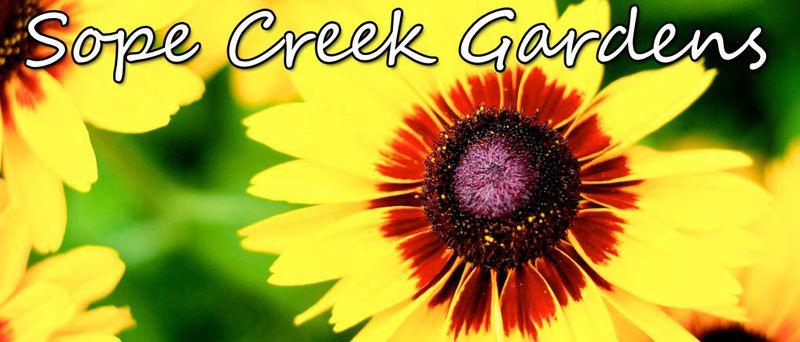 Garden Blog Banner