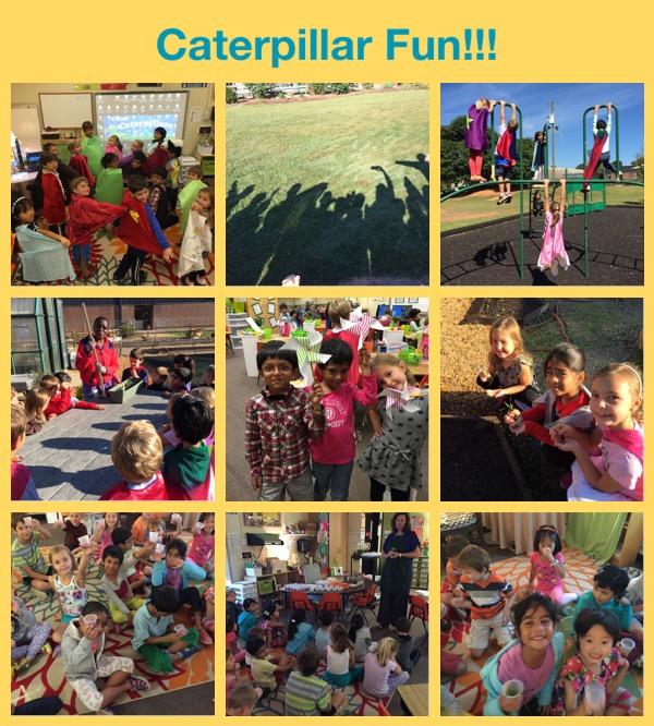 Caterpillar fun