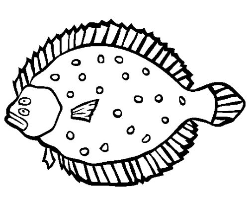 Flounder Coloring Page